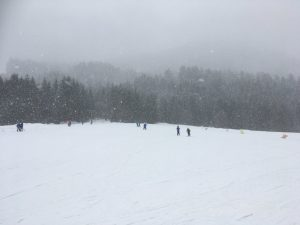 A very snowy day with skiers in the distance