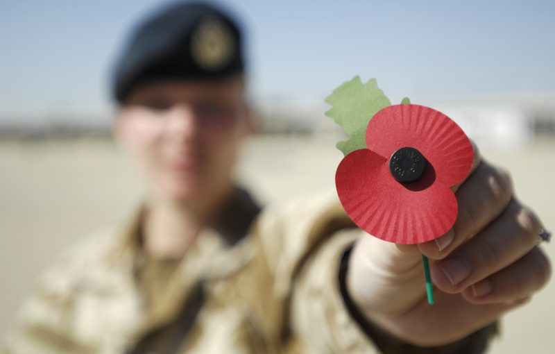 Soldier holds a Remembrance poppy